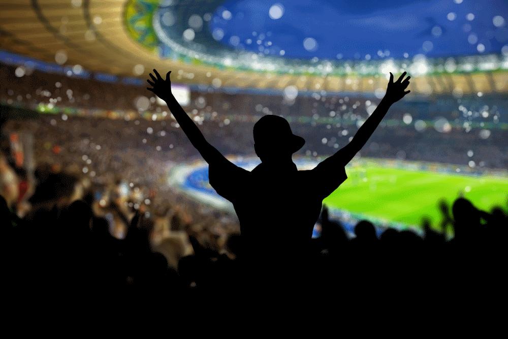 Fan im Fußball Stadion